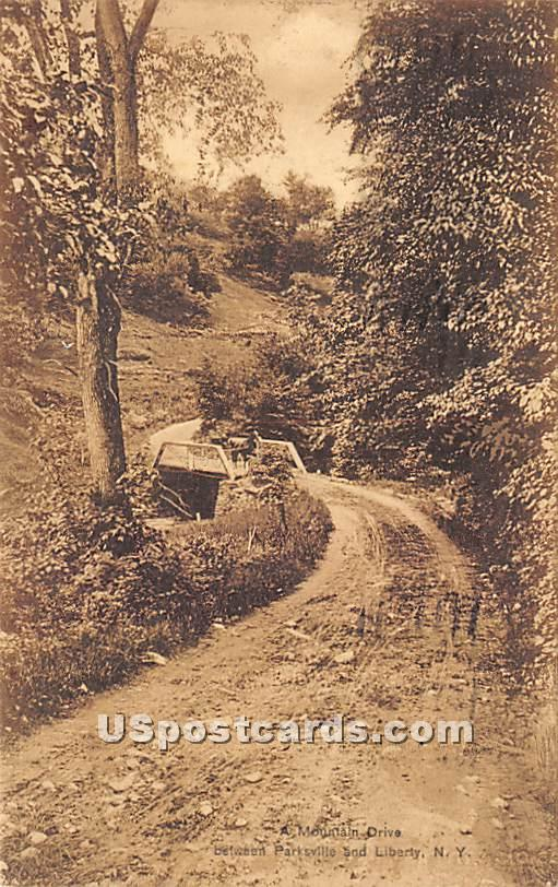 Mountain Drive - Parksville, New York NY Postcard