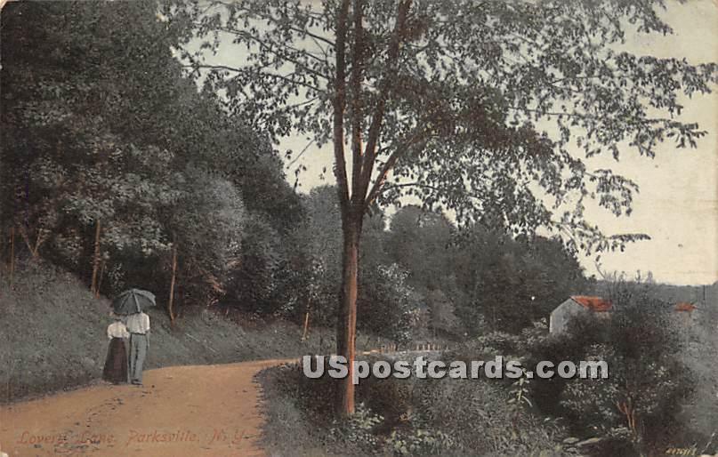 Lovers' Lane - Parksville, New York NY Postcard