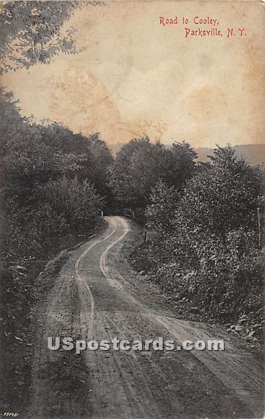 Road to Cooley - Parksville, New York NY Postcard