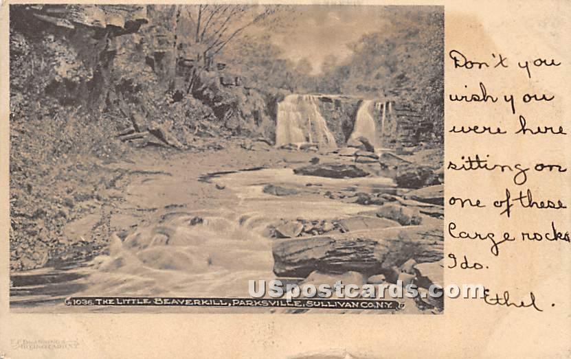 Little beaver kill - Parksville, New York NY Postcard