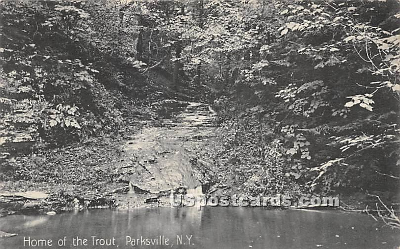Home of the Trout - Parksville, New York NY Postcard