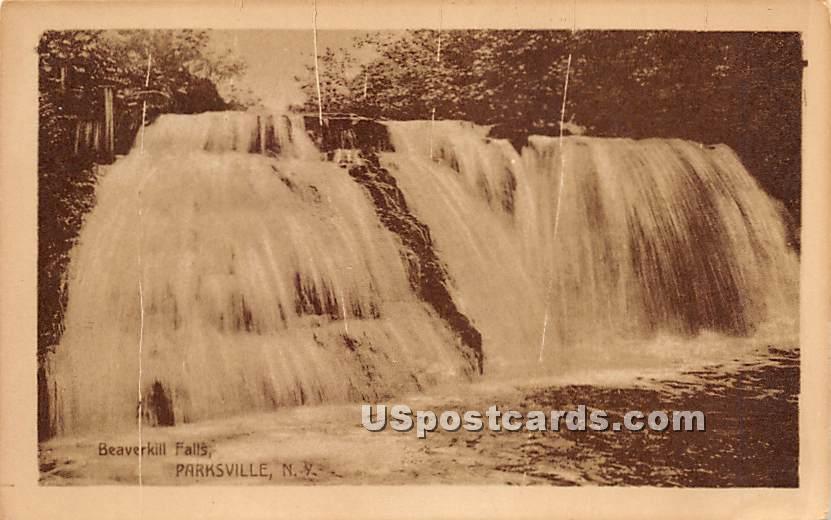 Beaverkill Falls - Parksville, New York NY Postcard