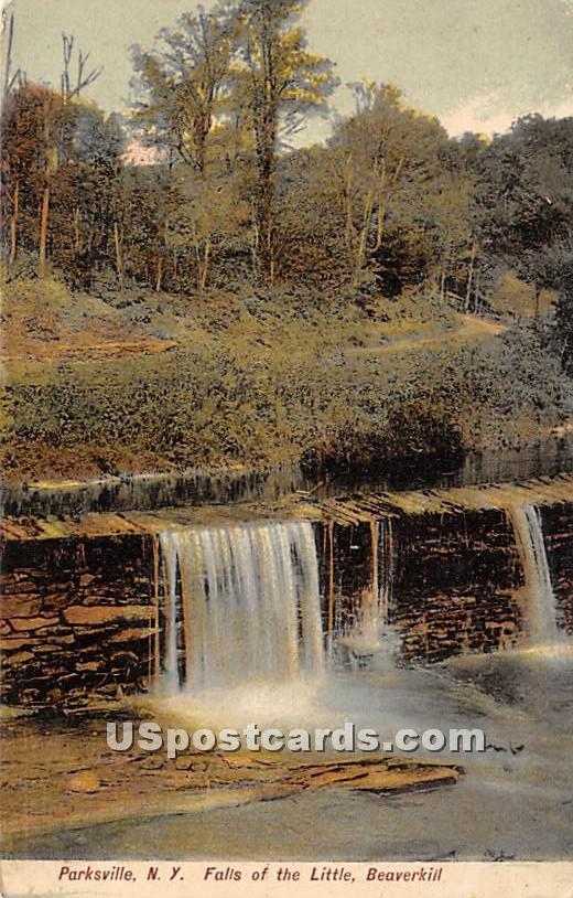 Falls of the Little Beaverkill - Parksville, New York NY Postcard