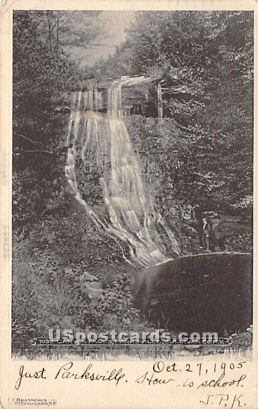 Canyon Falls - Parksville, New York NY Postcard