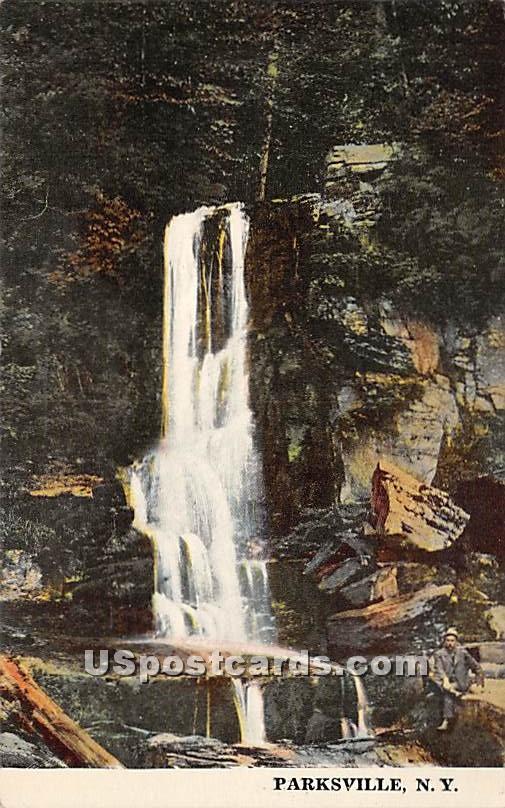 Falls - Parksville, New York NY Postcard