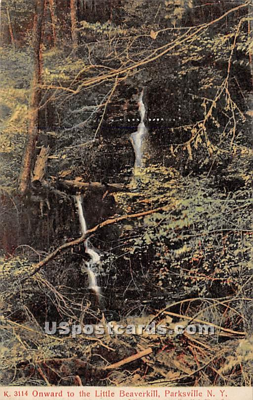 Onward to the Little Beaverkill - Parksville, New York NY Postcard