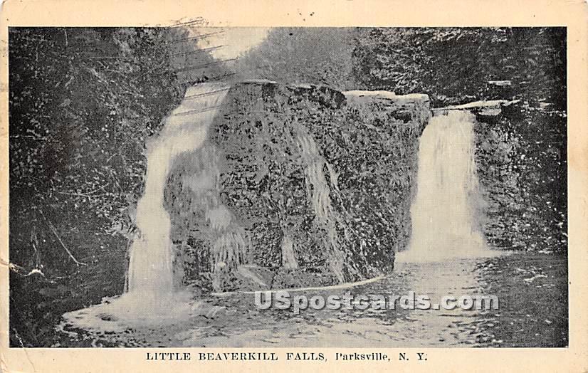 Little Beaverkill Falls - Parksville, New York NY Postcard