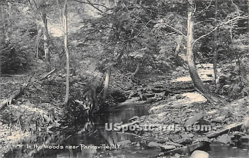 In the Woods - Parksville, New York NY Postcard