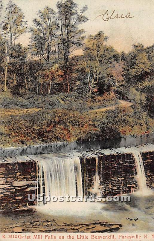 Grist Mill Falls on the Little Beaverkill - Parksville, New York NY Postcard
