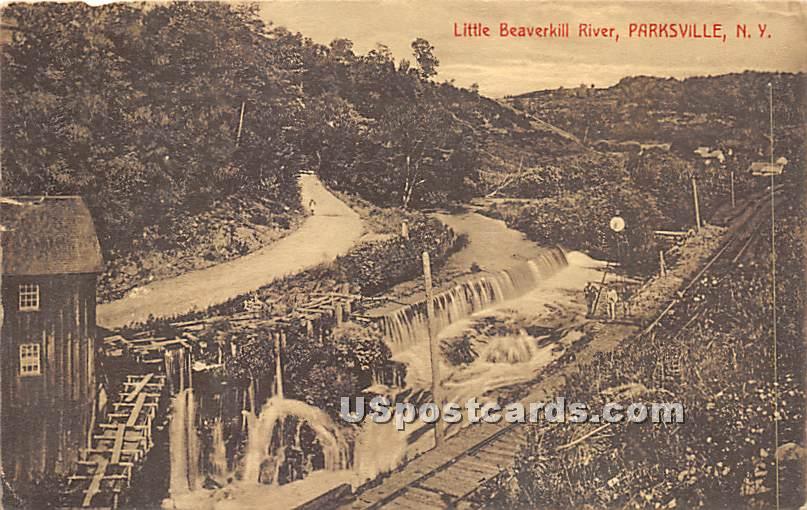 Little Beaverkill River - Parksville, New York NY Postcard
