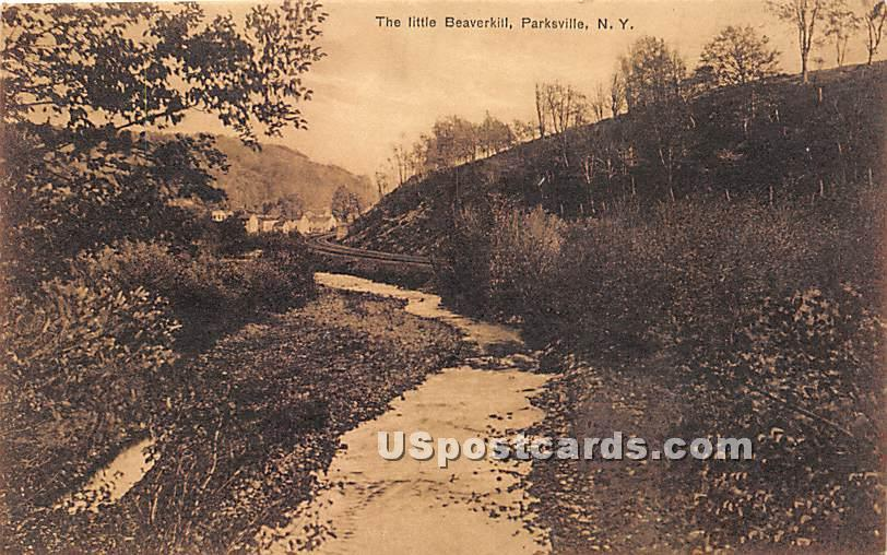 The Little Beaverkill - Parksville, New York NY Postcard