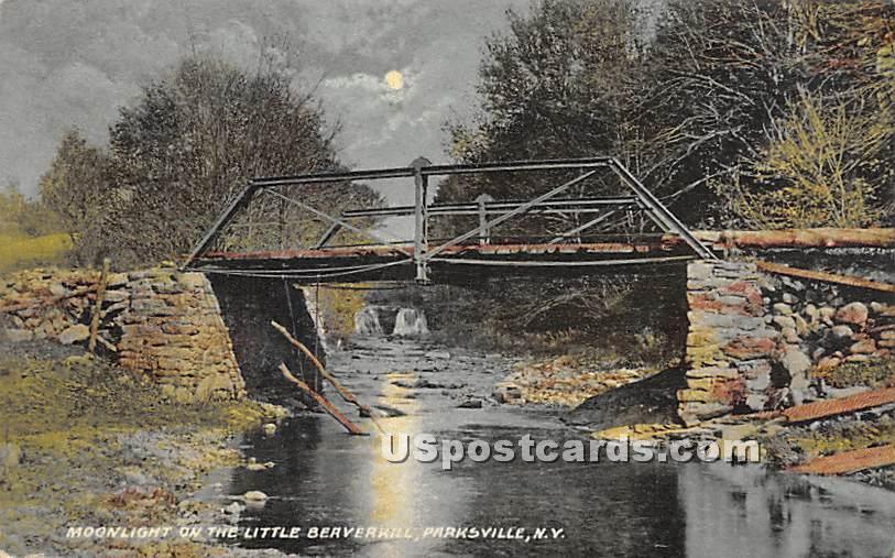 Moonlight on the Little Beaverkill - Parksville, New York NY Postcard