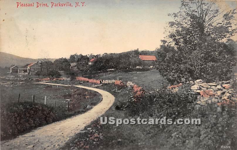 Pleasant Drive - Parksville, New York NY Postcard
