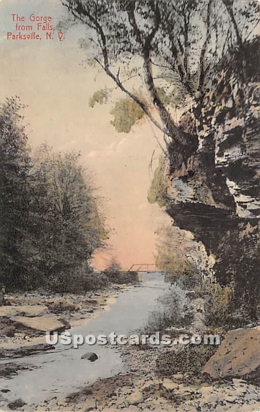 The Gorge from Falls - Parksville, New York NY Postcard
