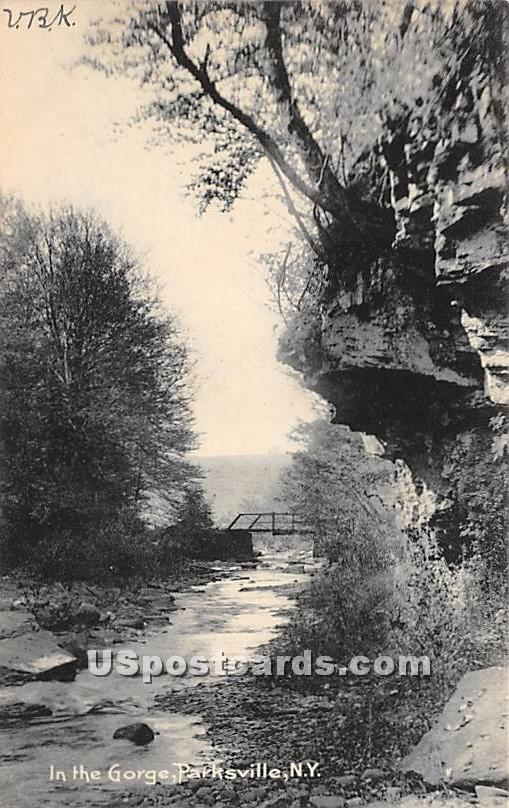In the Gorge - Parksville, New York NY Postcard