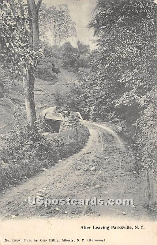 After Leaving - Parksville, New York NY Postcard