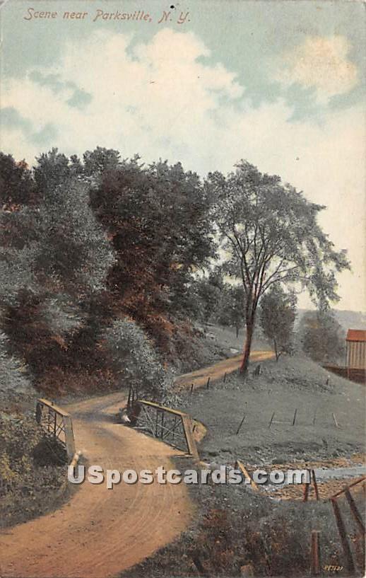 Scene Near - Parksville, New York NY Postcard