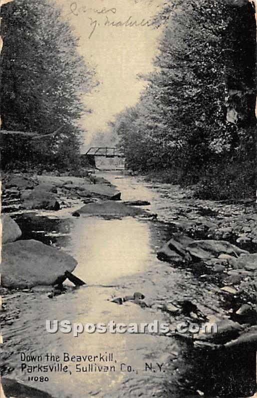 Down the Beaverkill - Parksville, New York NY Postcard