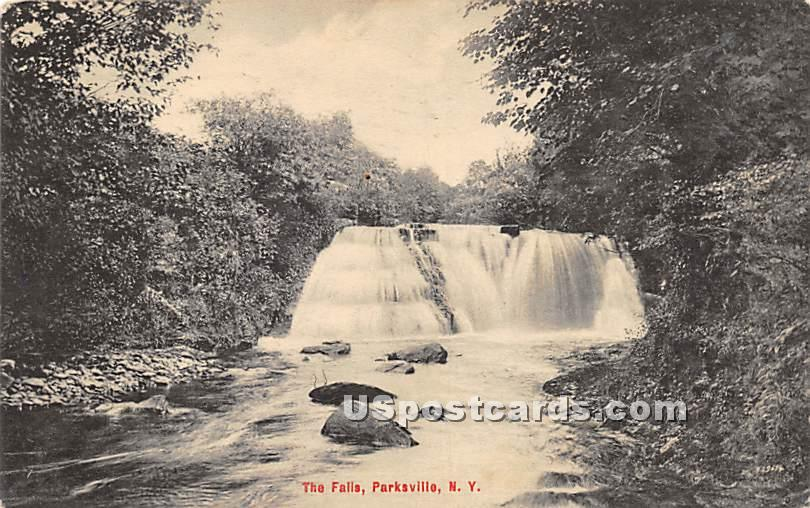 The Falls - Parksville, New York NY Postcard