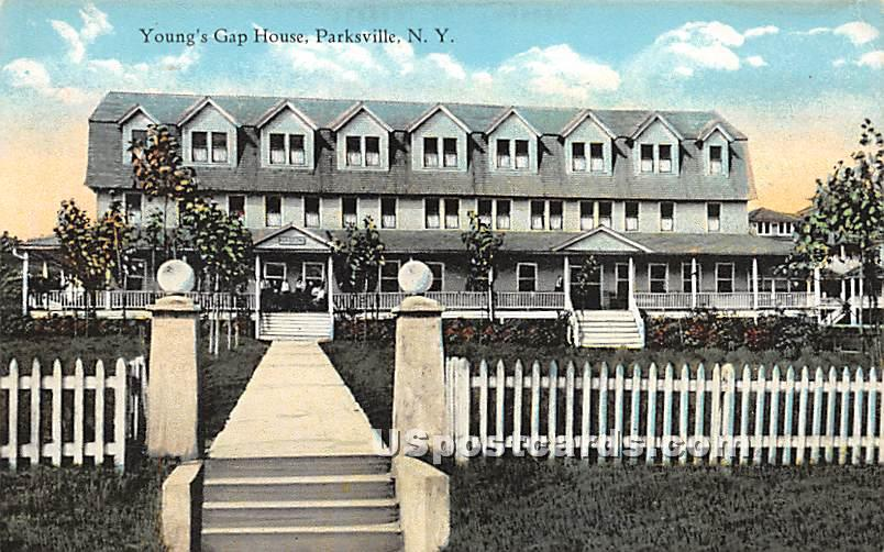 Young's Gap House - Parksville, New York NY Postcard