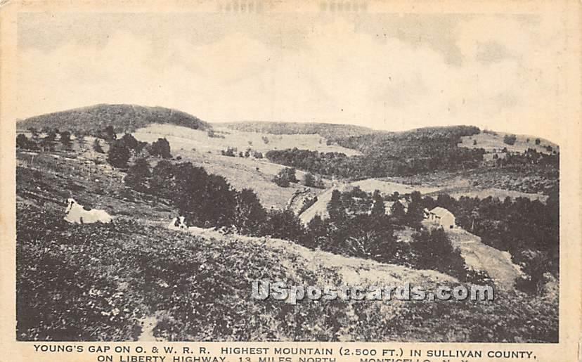 Young's Gap on O & W RR - Parksville, New York NY Postcard