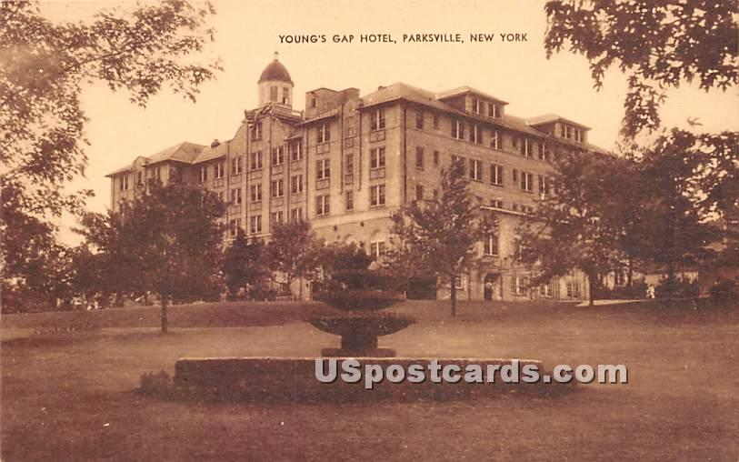 Young's Gap Hotel - Parksville, New York NY Postcard