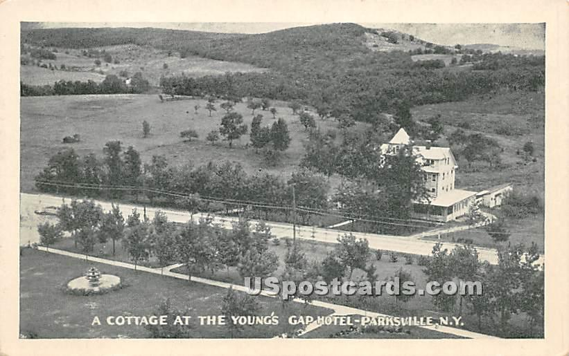 Cottage at Young's Gap Hotel - Parksville, New York NY Postcard
