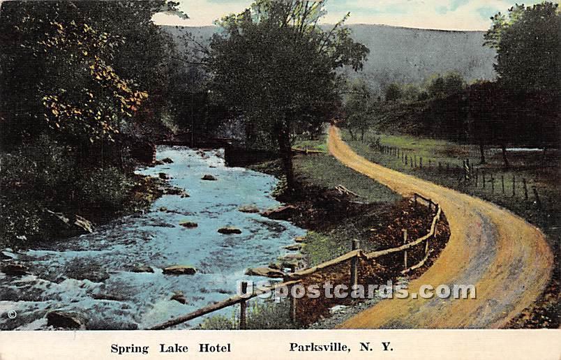 Spring Lake Hotel - Parksville, New York NY Postcard