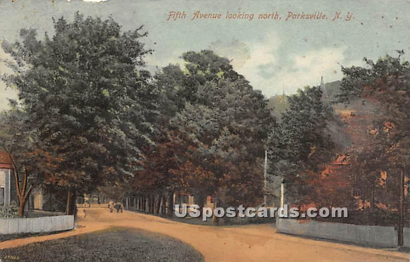 Fifth Avenue - Parksville, New York NY Postcard