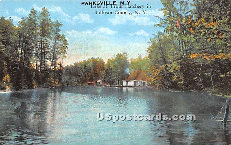 Lake at Trout Hatchery - Parksville, New York NY Postcard