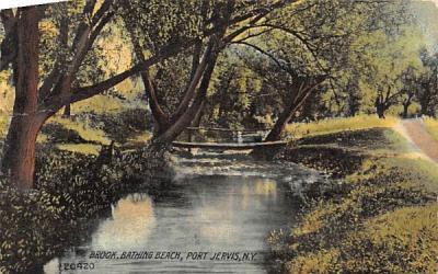 Brook Port Jervis, New York Postcard