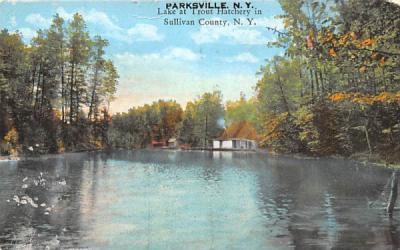 Lake at Trout Hatchery Parksville, New York Postcard