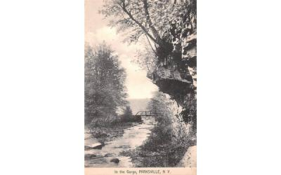 In the Gorge Parksville, New York Postcard