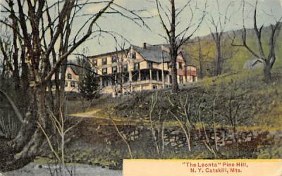 The Leonta Pine Hill, New York Postcard