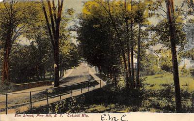 Elm Street Pine Hill, New York Postcard