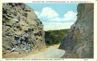 Sullivan Trail at Twin Cuts - Watkins Glen, New York NY Postcard