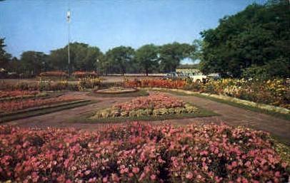 Flower Gardens - Buffalo, New York NY Postcard