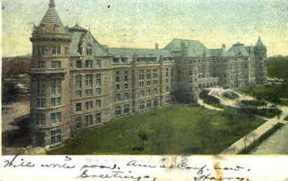 Museum of Natural History - Misc, New York NY Postcard