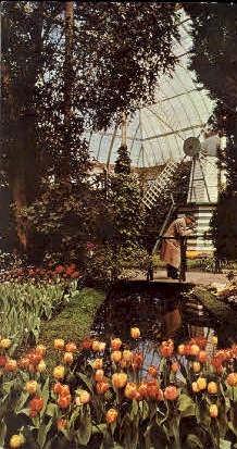 New York Botanical Gardens - Bronx Postcard