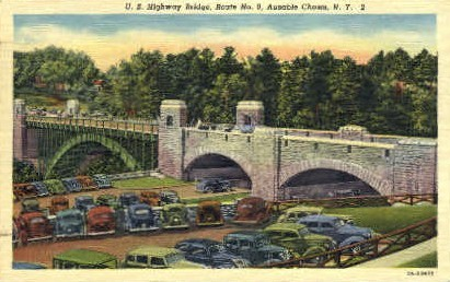 U.S. Highway Bridge - Ausable Chasm, New York NY Postcard