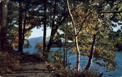 In the Adirondacks - Lake George, New York NY Postcard