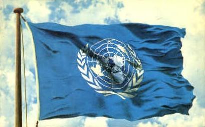 United Nations Flag - Misc, New York NY Postcard