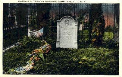 Grave of Theodore Roosevelt - Long Island, New York NY Postcard