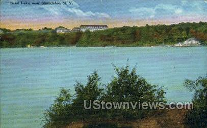 Shandelee, New York, NY Postcard