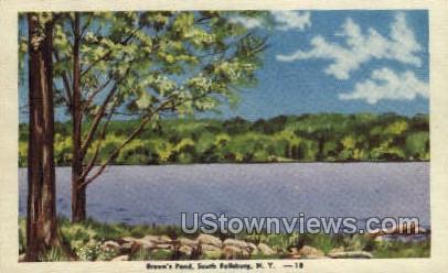 Brown's Pond - Fallsburg, New York NY Postcard