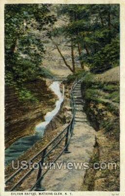 Sylvan Rapids - Watkins Glen, New York NY Postcard