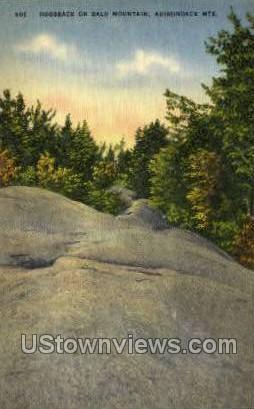 Hogsback, Bald Mountain - Adirondack Mts, New York NY Postcard