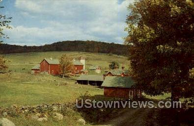 Youngsville, New York, NY Postcard