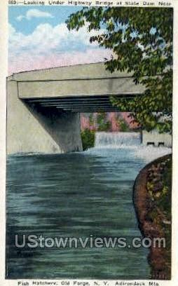 State Dam, Adirondack Mts - Old Forge, New York NY Postcard