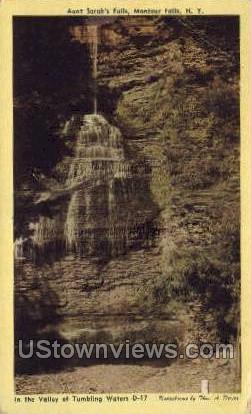 Aunt Sarah's Falls - Montour Falls, New York NY Postcard